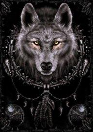xXAlpha-Wolf89Xx